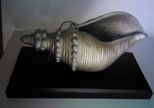 Caracola de plata